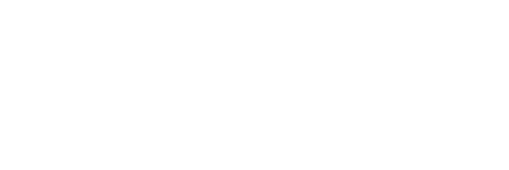 Talent Strategy Institute Logo